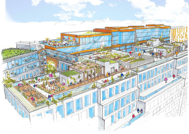 Rooftop Kitchen Garden Stockholm City Block To Get Linked Rooftop Gardens
